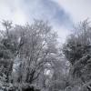 1_080_snow_experience_fieberbrunn_2015