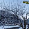 3_150_snow_experience_leogang_saalbach_2015