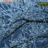 3_153_snow_experience_leogang_saalbach_2015