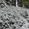 5_028_snow_experience_wildschonau_alpbachtal_2015 copy