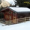 5_126_snow_experience_wildschonau_alpbachtal_2015 copy