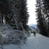 5_186_snow_experience_wildschonau_alpbachtal_2015 copy