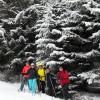 5_209_snow_experience_wildschonau_alpbachtal_2015 copy