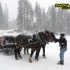 374_snow_experience_dolomiti_2015